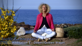 20.07.06. Anette Kannegaard Meditation 2 odden