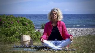 20.07.06. Anette Kannegard Meditation 1 Odden.Gniben Strand